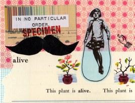 alive specimen201