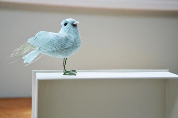 bird complete