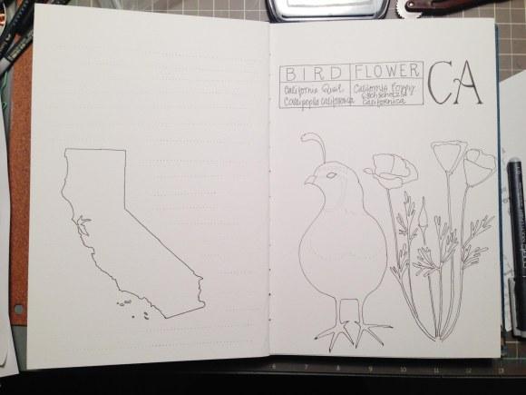 CA in progress